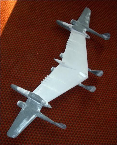 American Icarus Model
