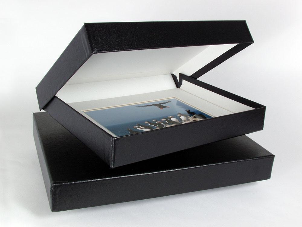 Photo Storage Box 11 1//4 x 7 3//4 x 4 1//2 Holds 1000 4x6 Photos--12 Choices!